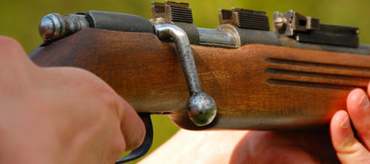 La carabine à plomb